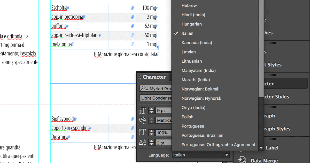 6 Steps you should take before sending an InDesign file to translation