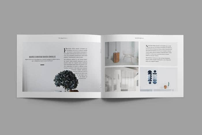 Landscape Minimalist Magazine Preview