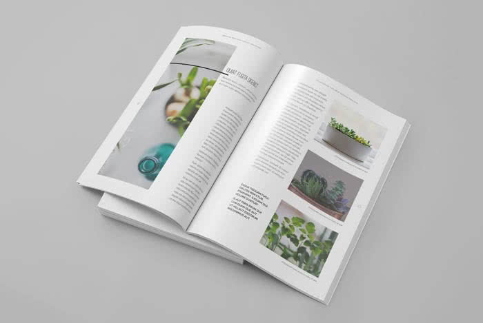 Multifunctional Magazine InDesign Template Preview